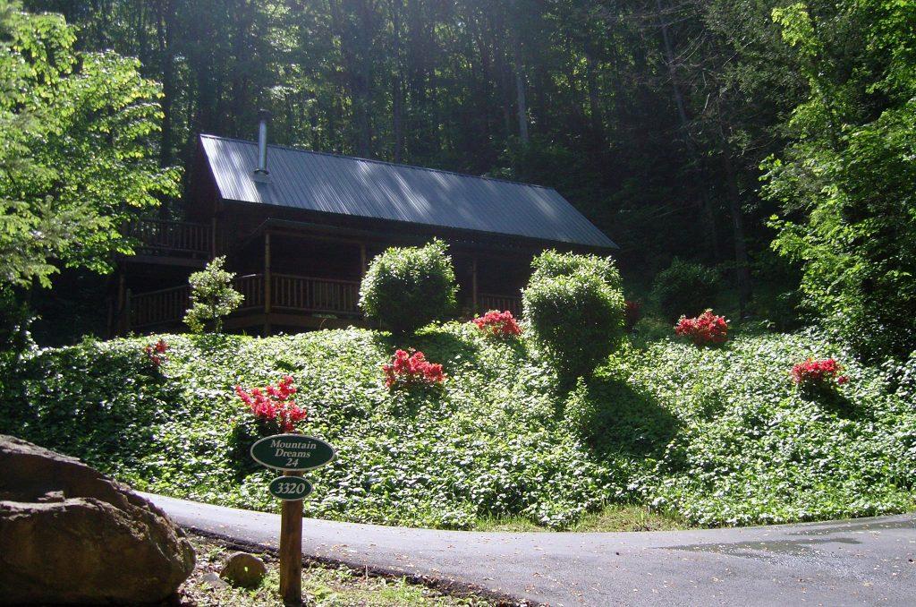 cabin rentals, cabin spots